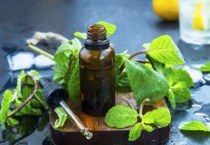 Lee más sobre el artículo Cocina natural: menta